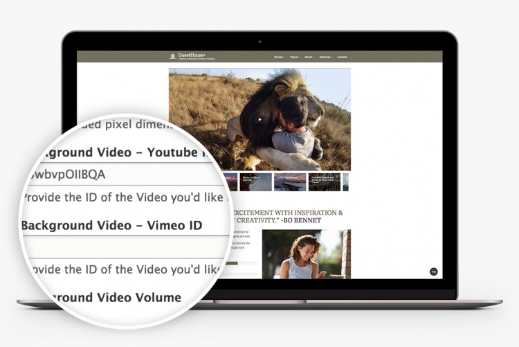 Support for video and video galleries. On the slideshow. In internal pages. Everywhere.